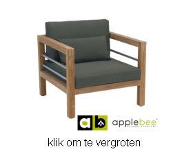 https://www.prinslifestyle.nl/pics/applebee/delmar-loungechair-applebee-2.jpg