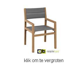https://www.prinslifestyle.nl/pics/applebee/delmar-tuinstoel-applebee-2.jpg